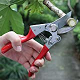 TOOLMOOM Professional Hand Pruners, Heavy Duty Pruners, Tree Trimmers Secateurs, Bypass Pruning Shears, Sharp Pruners Small, Garden Shears, Yard Clippers Pruners